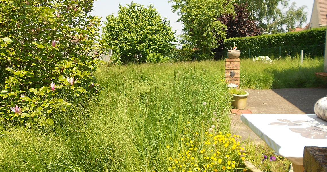 Avant jardinage osica bienvenue sur le site de sosie for Site de jardinage en ligne
